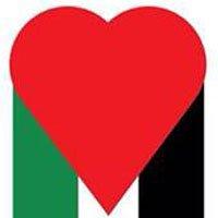 نمایشگاه پوستر حمایت از غزه در ترکیه